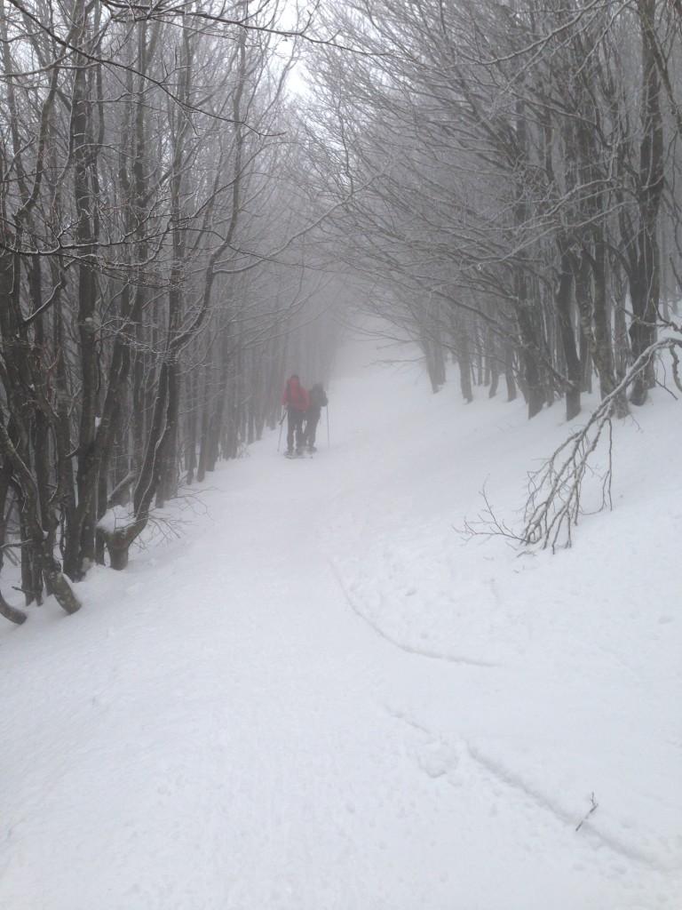 Ciaspolata al monte Falterona